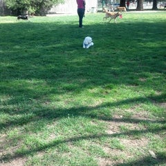 Photo taken at Elk Grove Off Leash Dog Park by Nikki E. on 3/11/2013