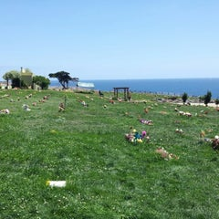 Photo taken at Cementerio de Playa Ancha by Patricio F. on 11/17/2012