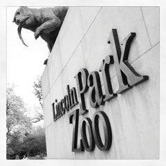Photo taken at Lincoln Park Zoo by Becki S. on 10/28/2012