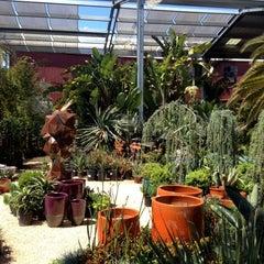 Photo taken at Flora Grubb Gardens by Justin S. on 4/22/2012
