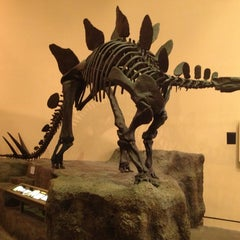 Photo taken at Fernbank Museum of Natural History by DJ L. on 1/13/2013