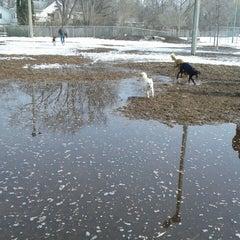 Photo taken at Bassett Creek Dog Park by Jordan H. on 3/30/2014