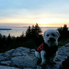 Photo taken at Cypress Mountain Lookout by Henry A. on 11/26/2012