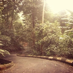 Photo taken at Bukit Nanas Forest Reserve by Baby S. on 11/12/2014