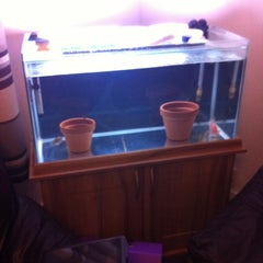 Photo taken at Fish Tank Maintenance Time by Mike ⚽⚽ on 5/2/2012