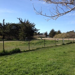 Photo taken at Alameda Dog Park by Nicholas L. on 3/3/2013