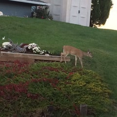 Photo taken at Spearfish, SD by Kathleen O. on 10/17/2015