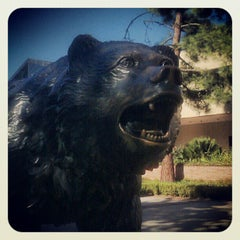 Photo taken at UCLA Bruin Statue by Ivy B. on 12/22/2012