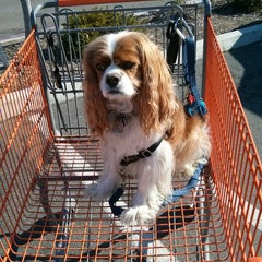 Photo taken at The Home Depot by Lisa S. on 4/8/2014