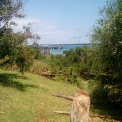 Photo taken at Kisite Mpunguti Marine Park by Kevin_ on 9/26/2014