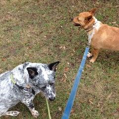 Photo taken at Brush Square Park by Whitney J. on 11/21/2014