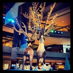 Photo taken at IFC Mall 國際金融中心商場 by Valerie C. on 11/22/2012