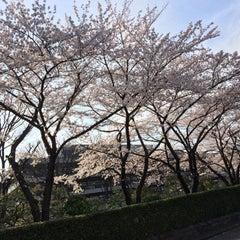 Photo taken at 国立国会図書館 新館 (National Diet Library Annex) by Satoshi K. on 3/30/2015