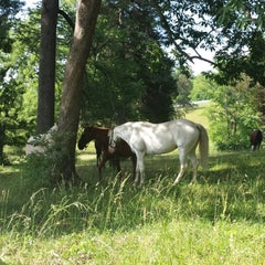 Photo taken at Ellington Agriculture Center by Sherry P. on 5/31/2014
