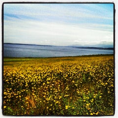 Photo taken at Ebey's Landing by Harry W. on 6/29/2013