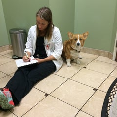 Photo taken at Shane Veterinary by Suzzee on 2/20/2015