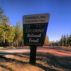 Photo taken at Coconino National Forest by Scott M. on 5/20/2013