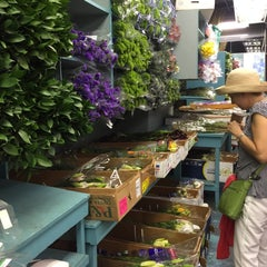 Photo taken at Flower District by Jess W. on 8/10/2015