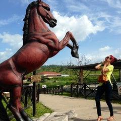 Photo taken at Zoologico Joya Grande by Cintya C. on 7/2/2014