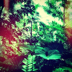 Photo taken at Conservatory of Flowers by Omarrr R. on 9/28/2012