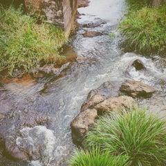 Photo taken at Mundo Verde by Carol I. on 5/9/2014