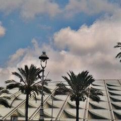 Photo taken at Bibliotheca Alexandrina | مكتبة الإسكندرية by Ariff R. on 6/16/2013