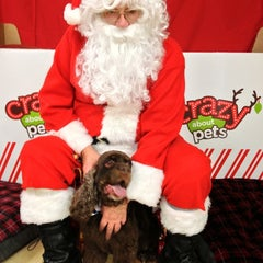 Photo taken at Petco by Stephen P. on 12/15/2012