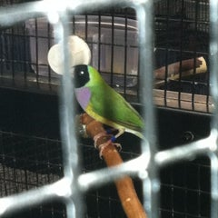 Photo taken at Anderson's Pet Shop by Judy A. on 6/22/2013