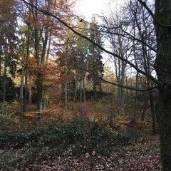 Photo taken at Parc départemental de Lacroix-Laval by Julien S. on 11/11/2015