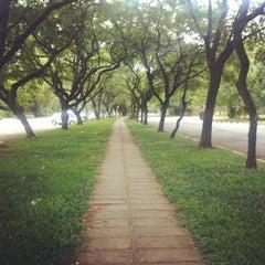 Photo taken at Universidade de São Paulo (USP) by Paula M. on 1/8/2013
