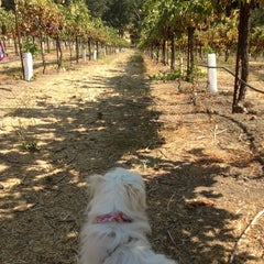 Photo taken at Hearthstone Vineyard and Winery by Masa S. on 9/9/2013