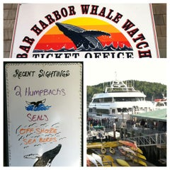 Photo taken at Bar Harbor Whale Watch Co. by Stuart S. on 8/16/2013