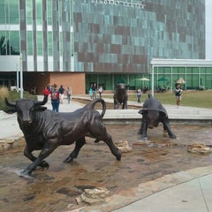 Photo taken at University of South Florida by Lance O. on 12/3/2012