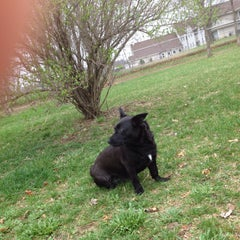 Photo taken at Eau Claire Dog Park by Jeanny H. on 5/9/2014
