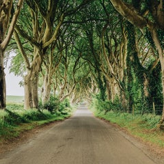 Photo taken at The Dark Hedges by Tanner Wendell S. on 3/25/2015