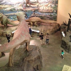 Photo taken at Fernbank Museum of Natural History by Felipe I. on 11/25/2012