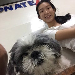 Photo taken at โรงพยาบาลสัตว์สุวรรณชาด (Suwanchard Pet Hospital) by Baicha P. on 3/1/2015