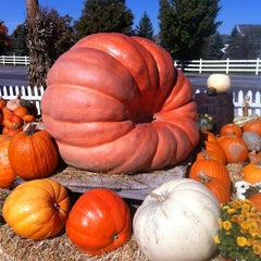 Photo taken at Smith Farm Market by Mark F. on 10/11/2012