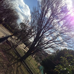 Photo taken at 大曽公園 大曽公園北 by YAS T. on 1/27/2013