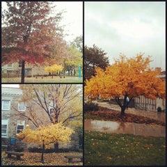 Photo taken at University of Missouri-Kansas City (UMKC) by Cesar Augusto N. on 10/30/2013