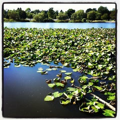 Photo taken at Trout Lake by Junnn on 9/1/2012