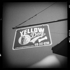 Photo taken at Yellow Dog Tavern by Elliott P. on 5/21/2013