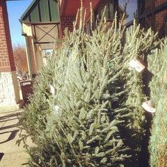 Photo taken at Farm Fresh by David V. on 11/17/2012