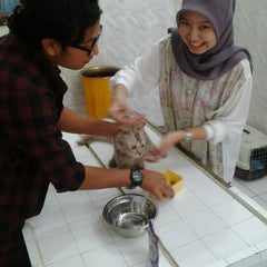 Photo taken at Klinik Hewan Kuningan FKH UGM by Azharuddin Fathin N. on 2/7/2013