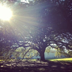 Photo taken at The Menil Collection by Ana R. on 1/10/2013