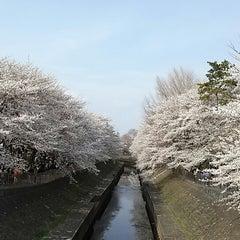 Photo taken at 尾崎橋 by Yoshitg. on 3/24/2013