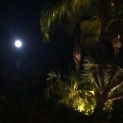 Photo taken at Parque El Majuelo by Teresa P. on 8/11/2014
