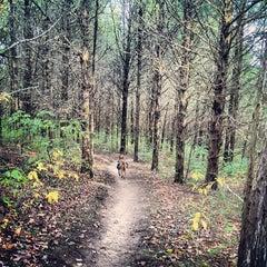 Photo taken at Indian Camp Creek Park by Erika W. on 10/13/2012