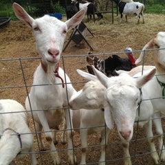 Photo taken at Jenness Farm by Jenn H. on 7/13/2013