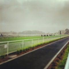 Photo taken at Royal Randwick Racecourse by Ronak M. on 10/6/2012